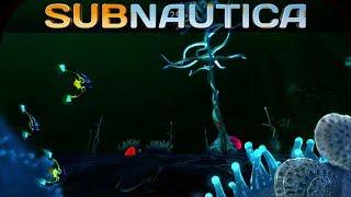🐟 Subnautica #017 | Tiefenpilze und blutiges Öl | Gameplay German Deutsch thumbnail