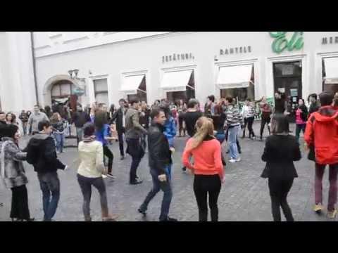 Flash Mob Rueda de Casino Oradea