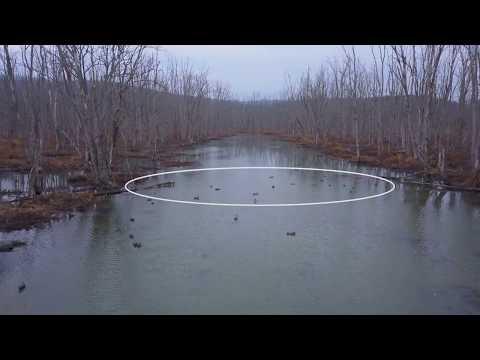 Creek Decoy Breakdown   Cabela's Northern Flight