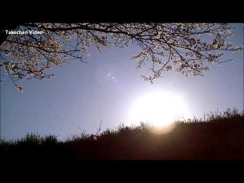 【癒しの音色と映像】レミオロメンの 「3月9日」 MusicBox