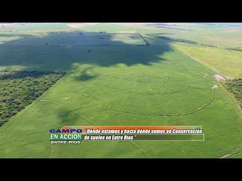 Jorge Gvozdenovich - EEA INTA Paraná - Conservación de suelos en Entre Ríos