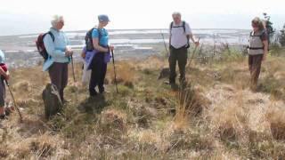 Swansea Ramblers walking on top of Kilvey Hill with panoramic sea views