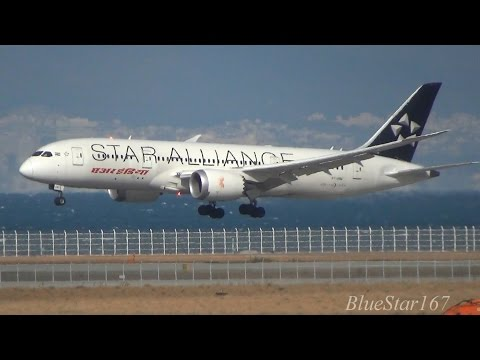 [1st Star Alliance 787] Air India Boeing 787-8 (VT-ANU) landing at KIX/RJBB (Osaka - Kansai) 24R