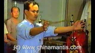 KWONGSAI MANTIS - SIFU LI SHI DAI  1989