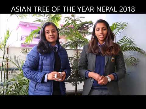 Daisy and Meenashi speaks about