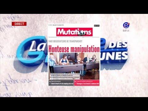 LA REVUE DE PRESSE (FAUX OBSERVATEURS DE TRANSPARENCY AU CAMEROUN: Honteuse Manipulation)