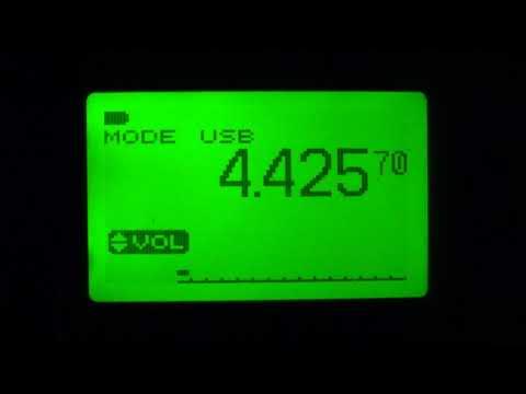 NMN Chesapeake Virginia USCG 4426 Khz USB Shortwave Icom IC R20
