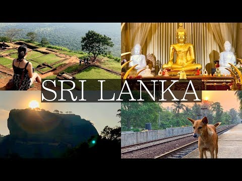 NEW! 7 Days in Sri Lanka: Ultimate Vlog | Sigiriya, Kandy, D