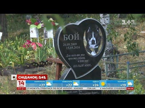 У Києві з'явиться найбільше кладовище для домашніх тварин