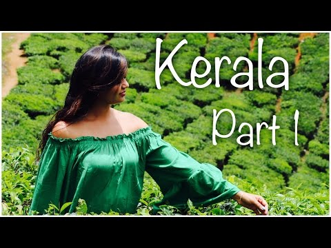 Kerala Travel Vlog | Part 1 | Munnar | Rivulet Resort | Tea