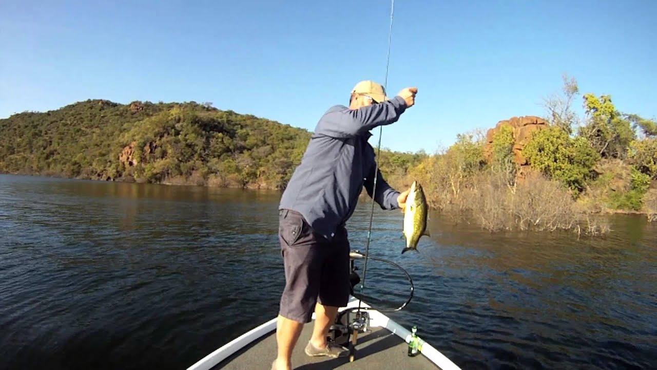 Bass fishing at de hoop dam for Fishing in delaware