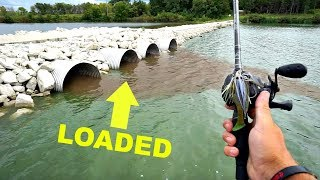 AMAZING Bass Fishing Drainage Tubes after a Storm!!! (He's Back)