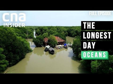 Sink Or Swim? Asia's Sinking Villages Engulfed By Rising Seas   The Longest Day   Climate Change
