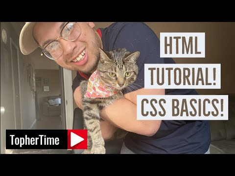 HTML Tutorial! (CSS Basics)