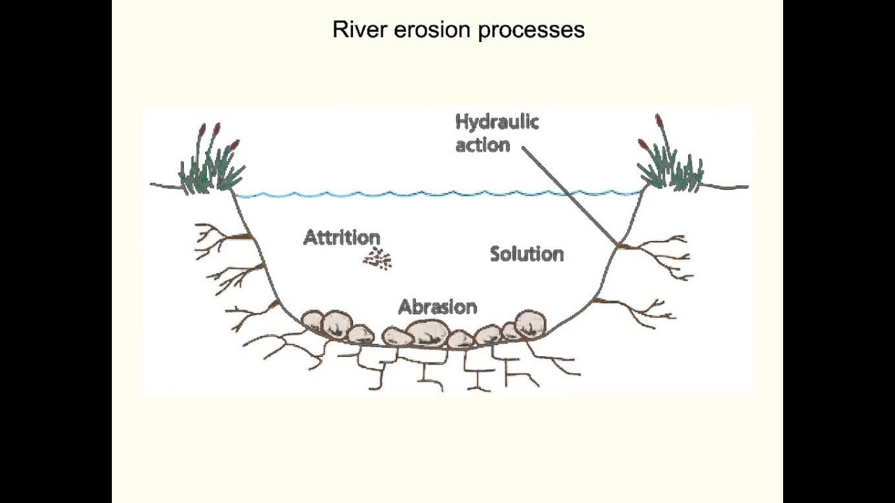River erosion processes (EE)  YouTube