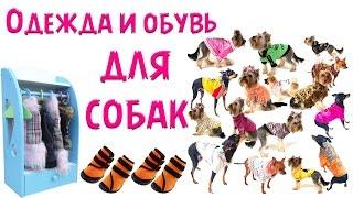 Одежда и  обувь для йоркширских терьеров и других собак.(Одежда и обувь для йоркширских терьеров и других собак http://www.youtube.com/watch?v=hAaTdmX9y9E. Всю одежду, имеющуюся в..., 2014-02-25T14:05:16.000Z)