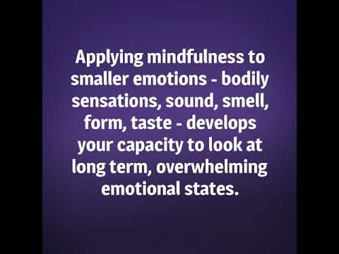 Copy of The Mindfulness Experience 2