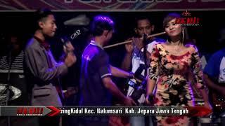 LUKA LAMA   Koko mahendra Feat Nency stefani