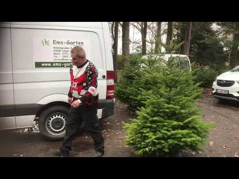 Ems Garten Wachendorf Lingen Weihnachtsbaumverkauf Und Innovative Weihnmachtsbaumstander Youtube