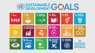 High-Level Political Forum: Reviewing SDG progress