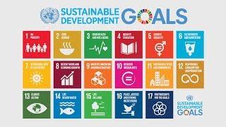 High-Level Political Forum: Reviewing SDG progress