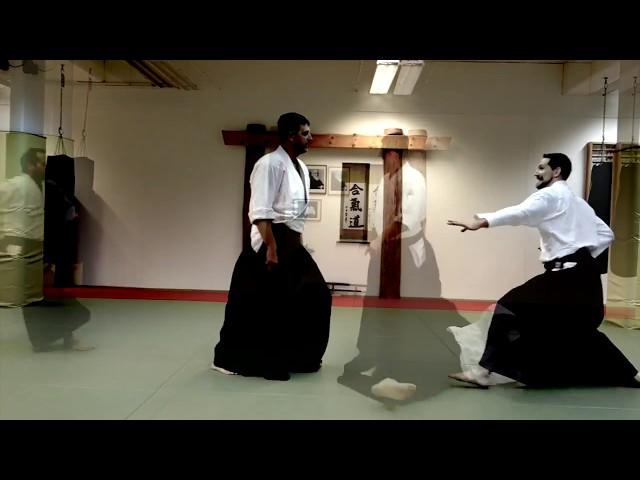 Aikido promo video 2018