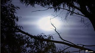 Feggaria hartina - Antonis Remos / Φεγγάρια χάρτινα - Αντώνης Ρέμος