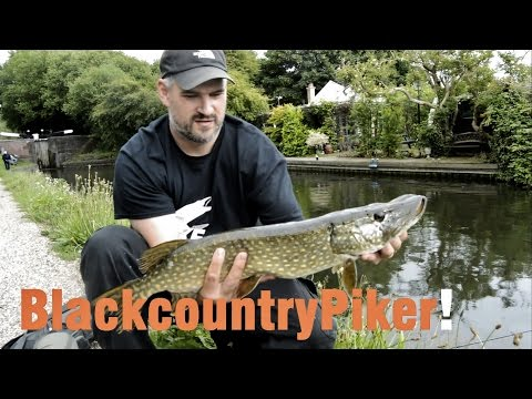 Lure Fishing In The Tropical Midlands With The Blackcoutnrypiker