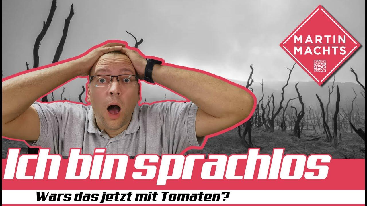 Was ist denn mit meinen #Tomaten PASSIERT?