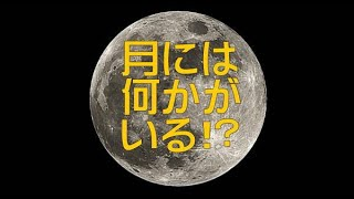 Disclosure File.219(B400mm7Min.)実写!月面を飛行する円盤型UFO!File.4284-4378(2017.11.4.-11.28.)