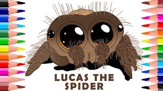 🕷️ How To Draw And Colour Lucas The Cutest Spider - Colouring Pages For Kids