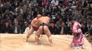 稀勢の里 vs 宝富士の取組。 2016大相撲春場所2日目。