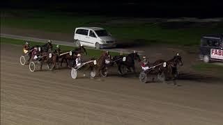 Vidéo de la course PMU PRIX TJAARDA - ORANJEWOUD