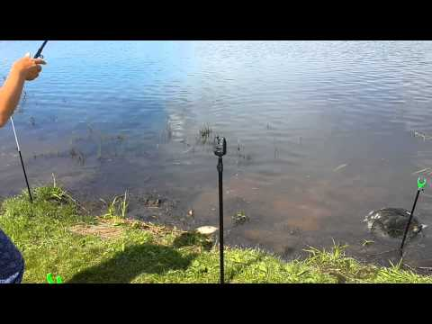 Рыбалка под Лакинском