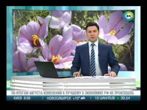 Азербайджанские ученые открыли метод искусственного выращивания шафрана.