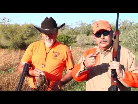 The Texas Sportsman - Quail Hunting