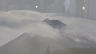 L'INCROYABLE EVENEMENT D'ART CONTEMPORAIN //Biennale Lyon