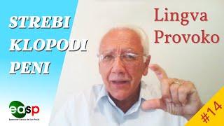 Lingva Provoko n-ro 14 (strebi – klopodi – peni)