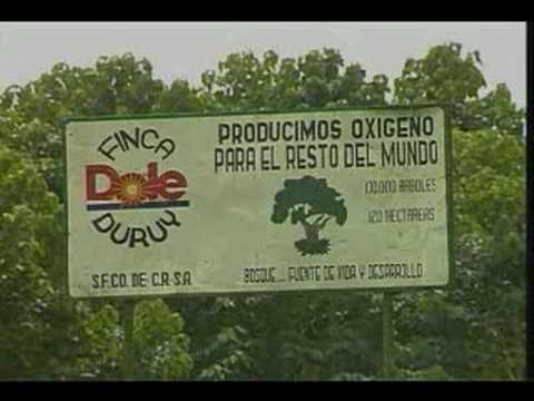 CO2 Compensation Agreement between Dole and Costa Rica