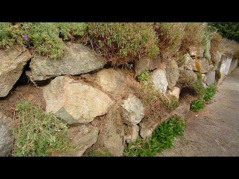 Подпорные стенки, их назначение и устройство