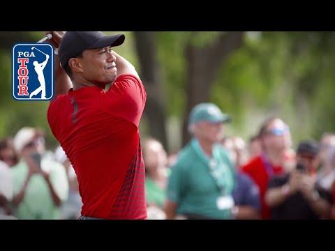 Act III, Part 4: Tiger Woods plays Valspar