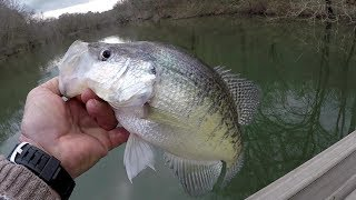 Crappie Fishing With Underspins - SLAB CRAPPIE!!!
