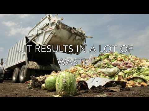 Food Waste in Australia!