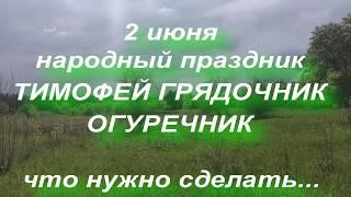 2 июня народный праздник Тимофей Огуречник Народные приметы и поверья
