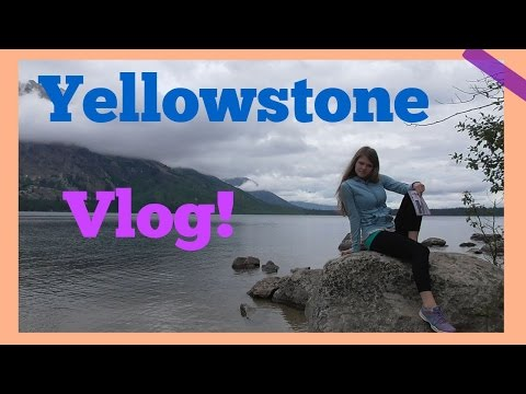 Yellowstone Vlog and getting up close with a bear in Teton National Park!