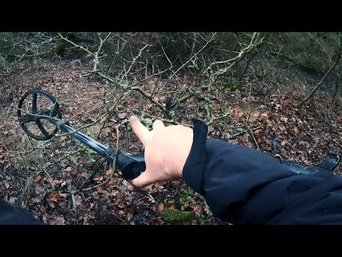 Metal Detecting Boar Territory - Difficult Hunt With A Coin
