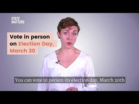 What are the Illinois Primary Elections?