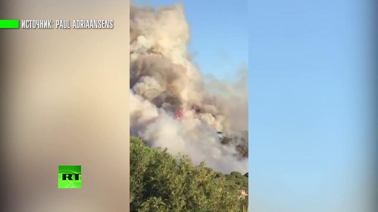 Лазурный Берег в огне: лесные пожары бушуют на юго-востоке Франции