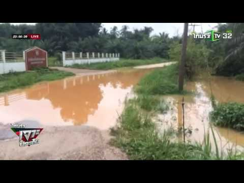 กระบี่ กิ่งไม้หักทับหลังคาบ้าน | 26-05-59 | ไทยรัฐเจาะประเด็น | ThairathTV