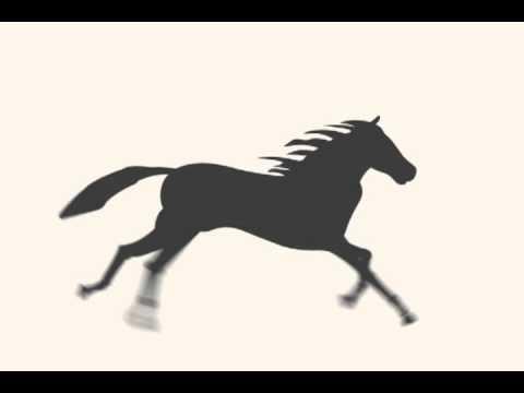 Running Horse Animation - YouTube - photo#3